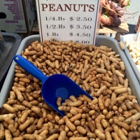 Garlic Roasted Peanuts