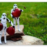 Happy Star Wars Day with Cherries
